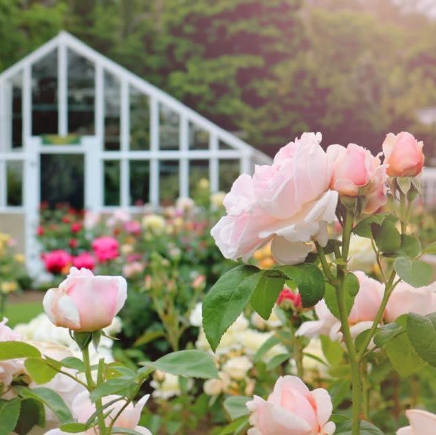 Fuller Gardens North Hampton NH