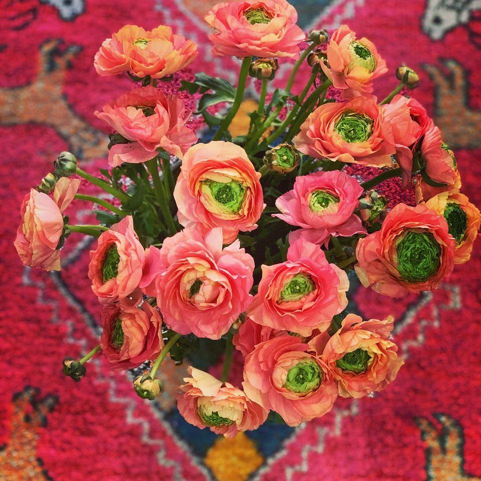 Flowers Portsmouth NH | Flower Kiosk