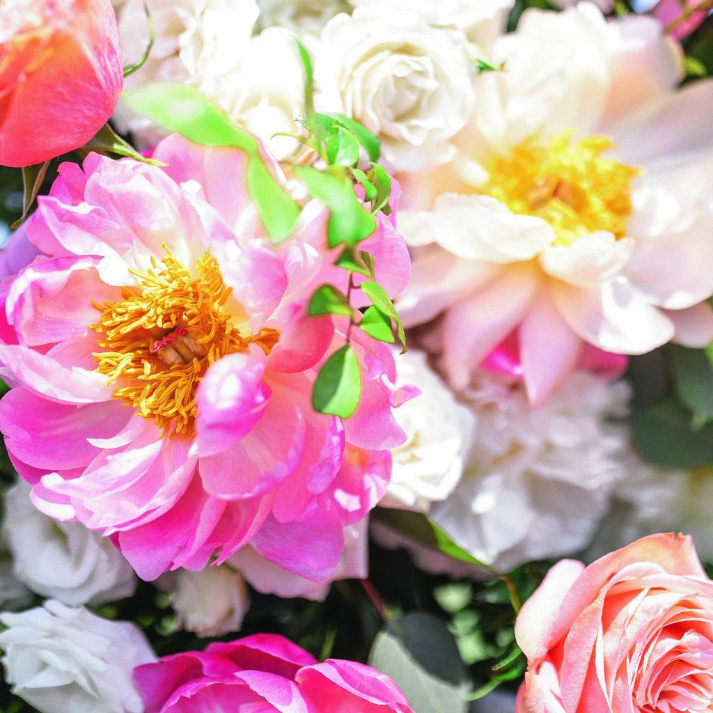 Jardiniere Flower Shop Portsmouth NH